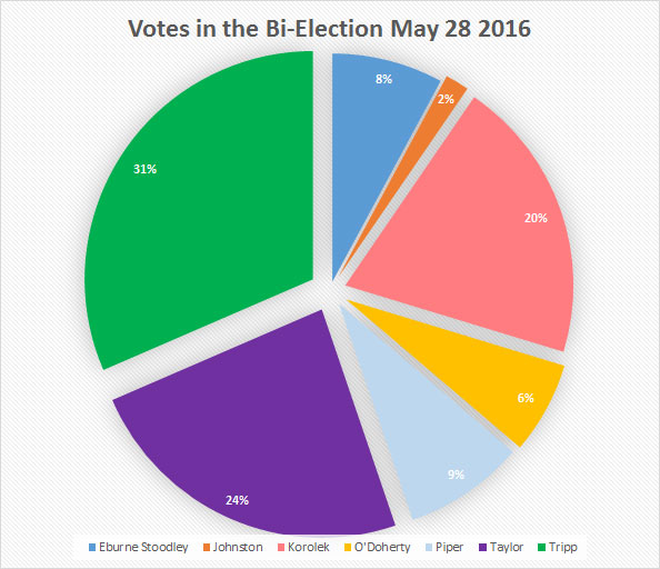 160528_bi_election_results_pie